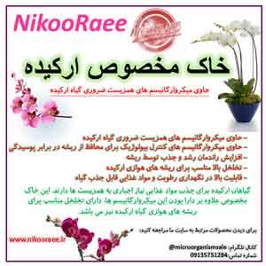 خاک-مخصوص-ارکیده-نیکورایی-www.nikooraee.ir