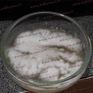 Gliocladium